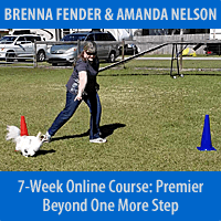 Beyond One More Step - 7-Week Course, Premier Registration