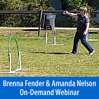 Just One More Step - On-Demand Webinar