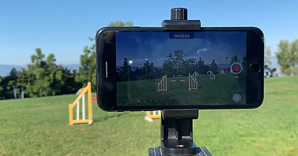 Videoing Yourself for Animal Training - On-Demand Lesson