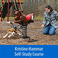 Introduction to Canine Parkour - Self-Study Course