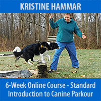 Introduction to Canine Parkour - 6-Week Course, Standard Registration