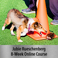 My Awesome Puppy - 8-Week Online Course, Standard Registration