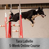 2 Jump Skills for Success - 5-Week Online Course, Standard Registration