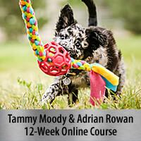 Building Confidence for Motivation & Speed - 12-Week Online Course, Standard Registration