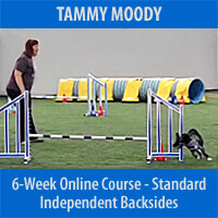 Independent Backsides - 6-Week Course, Standard Registration