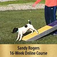 How to Strengthen & Maintain 2-On/2-Off Contacts 16-Week Online Course, Premier Registration