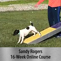 How to Strengthen & Maintain 2-On/2-Off Contacts 16-Week Online Course, Standard Registration
