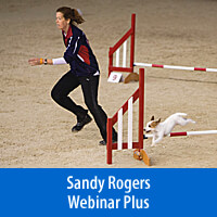 Feet First, The 5 Key Elements for Smoother Handling - Webinar Plus