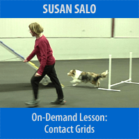 Contact Grids for Better Footwork & Safe Approaches - On-Demand Lesson