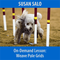 Weave Pole Grids for Improving Footwork - On-Demand Lesson