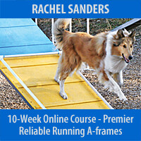 Reliable Running A-frames Personalized Program - 10-Week Course, Premier Registration