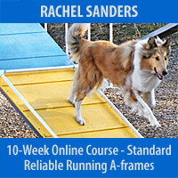 Reliable Running A-frames Personalized Program - 10-Week Course, Standard Registration