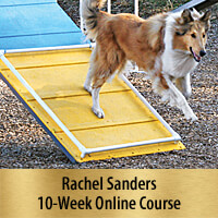 Reliable Running A-frames - 10-Week Online Course, Premier Registration