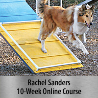 Reliable Running A-frames - 10-Week Online Course, Standard Registration