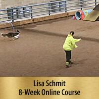 Consistent & Independent Obstacle Discrimination - 8-Week Online Course, Premier Registration