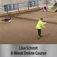 Consistent & Independent Obstacle Discrimination - 8-Week Online Course, Standard Registration