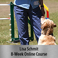 In the Connection Zone - 8-Week Online Course, Standard Registration