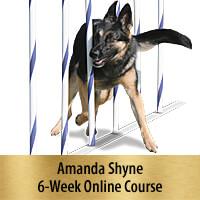 Weaves That Wow - 6-Week Online Course, Premier Registration