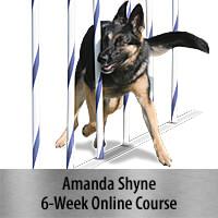 Weaves That Wow - 6-Week Course, Standard Registration