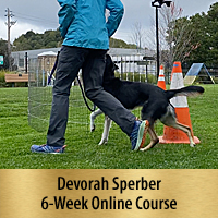 Channel Heeling: A New Way to Teach Heeling for Dog Sports 6-Week Online Course, Premier Registration