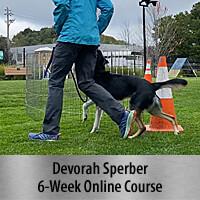 Channel Heeling: A New Way to Teach Heeling for Dog Sports 6-Week Online Course, Standard Registration