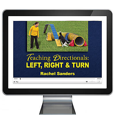 Teaching Directionals: Left, Right & Turn - Streaming DVD