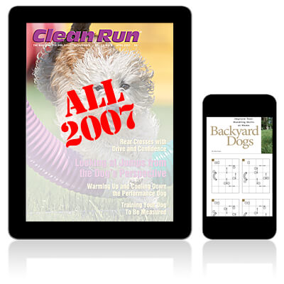 Links for 2007 Issues