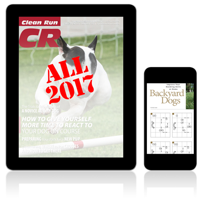 All 2017 Digital Editions