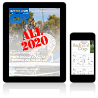 Links for 2020 Issues