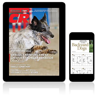 Clean Run Magazine - August 2017 Digital Edition
