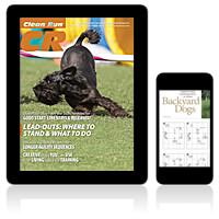 Clean Run Magazine - October 2019 Digital Edition
