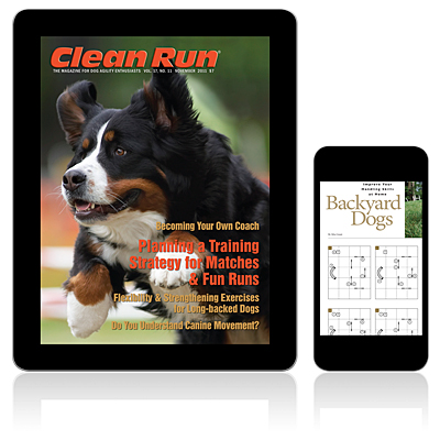 Clean Run Magazine - November 2011