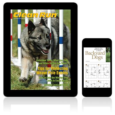 11/2012—November 2012 Digital Edition