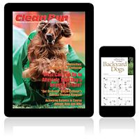 03/2007—March 2007 Digital Edition