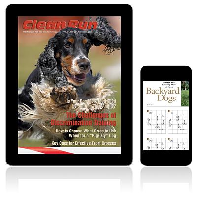 11/2008 - November 2008 Digital Edition