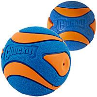 Chuckit Ultra Squeaker Balls