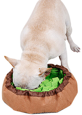 DogLemi Snuffle Bowl