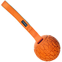 N-Gage Squeaker Ball with Handle