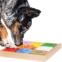 My Intelligent Pets Dog Sudoku Expert - Rainbow Edition