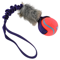 TugAway Bungee Bunny Ball Tug - Tennis Ball