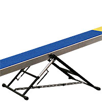 Clip and Go Agility Competition Seesaw