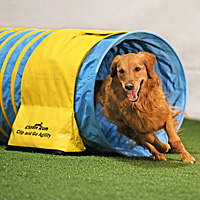 Clip and Go Agility Tunnel Bags