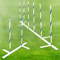 2x2 Complete Weave Pole Training Setup, 22 in. Spacing - 12 Poles