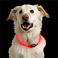 NiteHowl LED Safety Necklaces