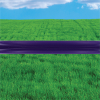 Jump Bars, Furniture Grade PVC - 5' Purple